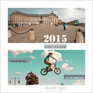 carte-voeux2015