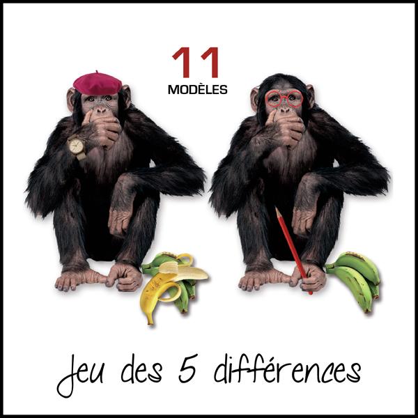 couv-5-différences