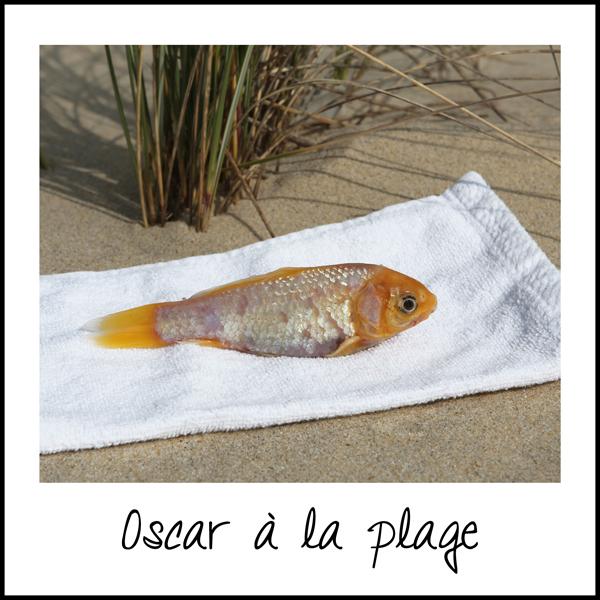 couv-Oscar-a-la-plage